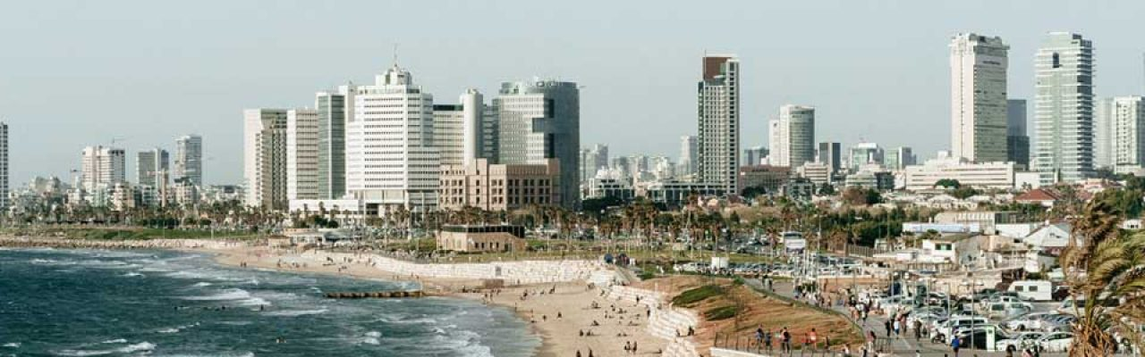 seo services in israel